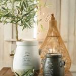 Parlane Olive Pots